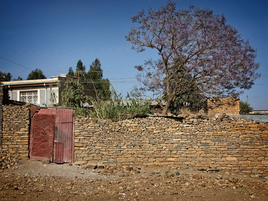 Gates of Mekelle #19 is a simple corrugated metal gate with a wood frame